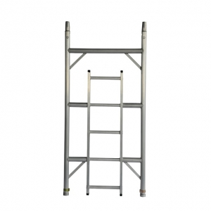SW Ladder 3 Rung 1.71m